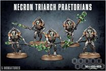 Necron Triarch Praetorians/Lychguard