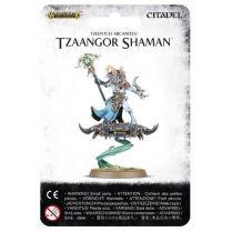Tzeentch Arcanites Tzaangor Shaman